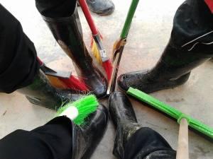 Seronok jadi cleaner.. :)